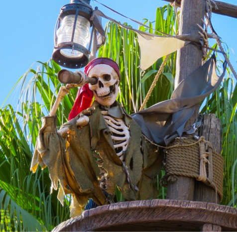 Pirate skeleton closeup